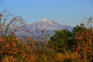 磐梯山と柿