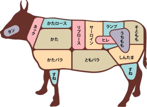 牛の部位図