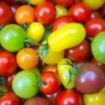 カラフルプチトマト