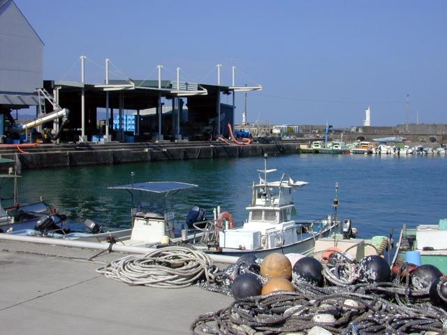 土佐清水の漁港